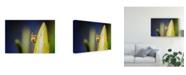 "Trademark Global Pixie Pics Bee on Protea Canvas Art - 15"" x 20"""