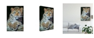 "Trademark Global Pip Mcgarry Amur Leopard Cub 2 Canvas Art - 15"" x 20"""