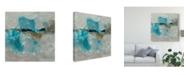 "Trademark Global Sheila Finch Butterfly Light II Canvas Art - 15"" x 20"""