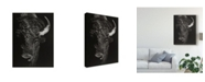 "Trademark Global Julie T. Chapman Black Glimpse I Canvas Art - 37"" x 49"""