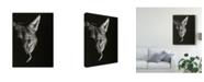 "Trademark Global Julie T. Chapman Black Glimpse VI Canvas Art - 37"" x 49"""