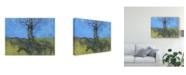"Trademark Global Paul Bailey Heathland Tree Study Canvas Art - 20"" x 25"""