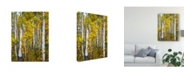 "Trademark Global David Drost Yellow Woods V Canvas Art - 15"" x 20"""