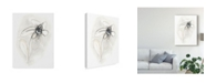 "Trademark Global June Erica Vess Neutral Floral Gesture V Canvas Art - 15"" x 20"""