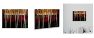 "Trademark Global Masters Fine Art Autumn Floating Brushed Aluminum Art - 22"" x 25"""