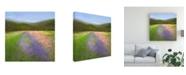 "Trademark Global Sheila Finch Flowers of Half Moon Bay I Canvas Art - 20"" x 25"""