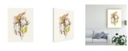 "Trademark Global June Erica Vess Chimera II Canvas Art - 20"" x 25"""