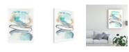 "Trademark Global Jennifer Goldberger Spiral Bloom I Canvas Art - 20"" x 25"""