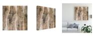 "Trademark Global John Butler Live Edge III Canvas Art - 15"" x 20"""
