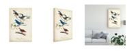 "Trademark Global John James Audubon Indigo Bunting Birds Canvas Art - 15"" x 20"""