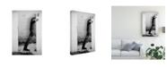 "Trademark Global Nuno Borges Gone Away Canvas Art - 20"" x 25"""