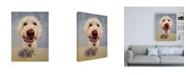 "Trademark Global Lucia Hefferna Molly White Dog Canvas Art - 36.5"" x 48"""