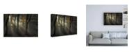 """Trademark Global Nel Talen Sunbeam Canvas Art - 15.5"""" x 21"""""""