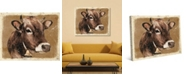 """Creative Gallery Klance the Cow Distressed 24"""" x 20"""" Canvas Wall Art Print"""