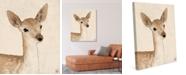 "Creative Gallery Little Rustic Deer Drawing 20"" X 24"" Canvas Wall Art Print"