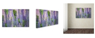 "Trademark Global Cora Niele 'Blue Pink Lupine Field' Canvas Art - 24"" x 16"" x 2"""