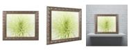 """Trademark Global Cora Niele 'Lime Light Spider Mum' Ornate Framed Art - 14"""" x 11"""" x 0.5"""""""