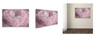"Trademark Global Cora Niele 'Persian Pink Petals' Canvas Art - 19"" x 12"" x 2"""