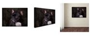 "Trademark Global Jai Johnson 'Black French Bulldog Portrait' Canvas Art - 32"" x 24"" x 2"""