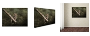 "Trademark Global Jai Johnson 'Great Horned Owl At Shiloh' Canvas Art - 19"" x 14"" x 2"""