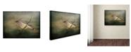 """Trademark Global Jai Johnson 'Portrait Of A Cedar Waxwing' Canvas Art - 47"""" x 35"""" x 2"""""""