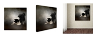 "Trademark Global Jai Johnson 'Ready To Play Border Collie' Canvas Art - 35"" x 35"" x 2"""