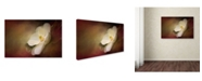 "Trademark Global Jai Johnson 'Magnolia In Bloom 1' Canvas Art - 32"" x 22"" x 2"""
