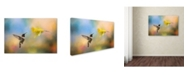 "Trademark Global Jai Johnson 'Garden Visitor' Canvas Art - 24"" x 16"" x 2"""