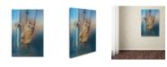 "Trademark Global Jai Johnson 'I Will Be Your Light' Canvas Art - 47"" x 30"" x 2"""
