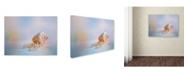 "Trademark Global Jai Johnson 'Beach Memories 1' Canvas Art - 47"" x 35"" x 2"""