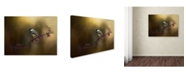 "Trademark Global Jai Johnson 'Chickadee In The Golden Light' Canvas Art - 19"" x 14"" x 2"""