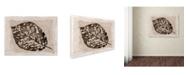 """Trademark Global Cora Niele 'Sepia Leaf' Canvas Art - 47"""" x 35"""" x 2"""""""