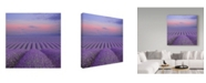 "Trademark Global Cora Niele 'Lavender Field At Dusk' Canvas Art - 24"" x 24"" x 2"""