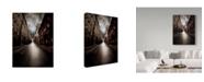"Trademark Global David Senechal Photographie 'Dead End' Canvas Art - 14"" x 2"" x 19"""