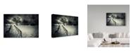 "Trademark Global David Senechal Photographie 'Stairs To The Sanctuary Ii' Canvas Art - 32"" x 2"" x 22"""