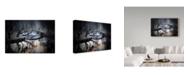 "Trademark Global Cristian Andreescu 'School Shoes' Canvas Art - 24"" x 2"" x 16"""