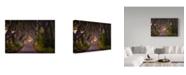 "Trademark Global Daniel F 'The Glowing Hedges' Canvas Art - 32"" x 2"" x 22"""
