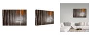 "Trademark Global David Frutos 'The Fallen Idol V' Canvas Art - 19"" x 2"" x 12"""