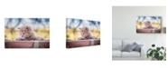 "Trademark Global Daniel Villalobos 'Cat On Wall' Canvas Art - 47"" x 2"" x 30"""
