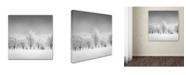 "Trademark Global Dave MacVicar 'Ice Storm' Canvas Art - 24"" x 24"" x 2"""