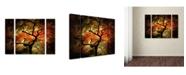 "Trademark Global Philippe Sainte-Laudy 'Japanese' Multi Panel Art Set Large - 41"" x 30"" x 2"""