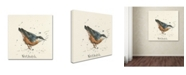 "Trademark Global Michelle Campbell 'Nuthatch' Canvas Art - 35"" x 35"" x 2"""
