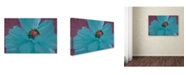"""Trademark Global Tina Lavoie 'Color Theory II' Canvas Art - 24"""" x 16"""" x 2"""""""