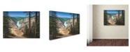 "Trademark Global Robert Wavra 'Lower Falls - Yellowstone' Canvas Art - 32"" x 24"" x 2"""
