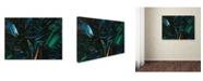 "Trademark Global James W. Johnson 'Nightfall' Canvas Art - 32"" x 24"" x 2"""