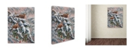 "Trademark Global Wanda Mumm 'Winter Trio' Canvas Art - 32"" x 24"" x 2"""