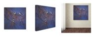 "Trademark Global Wanda Mumm 'Bittersweet' Canvas Art - 35"" x 35"" x 2"""