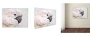 "Trademark Global Jai Johnson 'Umbrella Cockatoo Portrait' Canvas Art - 24"" x 18"" x 2"""
