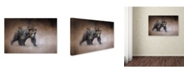 "Trademark Global Jai Johnson 'Young Grizzly Bear' Canvas Art - 24"" x 16"" x 2"""