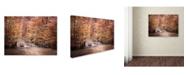"Trademark Global Jai Johnson 'The Little Blue Bridge' Canvas Art - 19"" x 14"" x 2"""